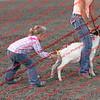 SLYR16-GoatUT-00008