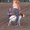 SLYR16-GoatUT-00020