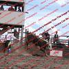 Towner 7 4 16 Performance Bulls =  00016