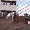 Towner 7 4 16 Performance Bulls =  00009