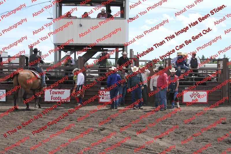 Towner 7 4 16 Performance Bulls =  00001