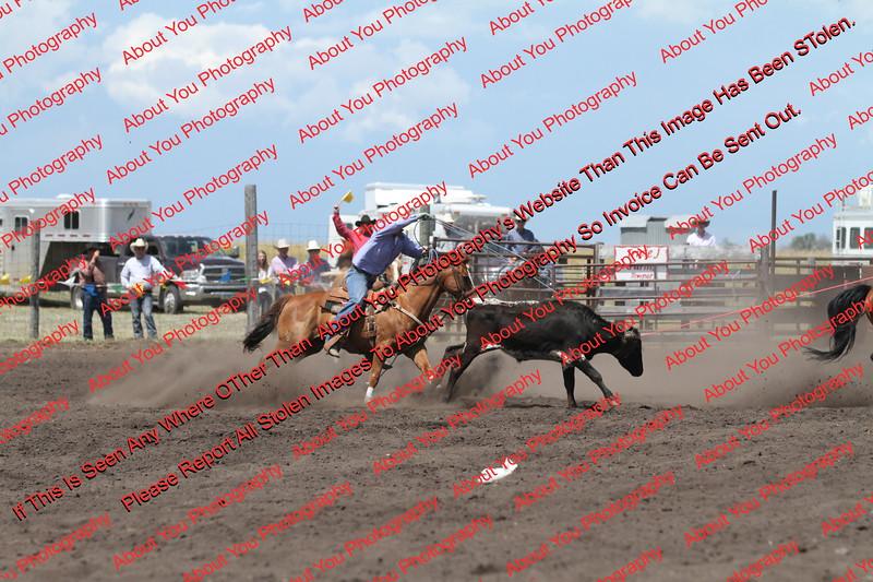 Towner 7 4 16 Performance Team Roping =  00014