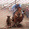 Towner 7 3 16 Calf Roping- 00057
