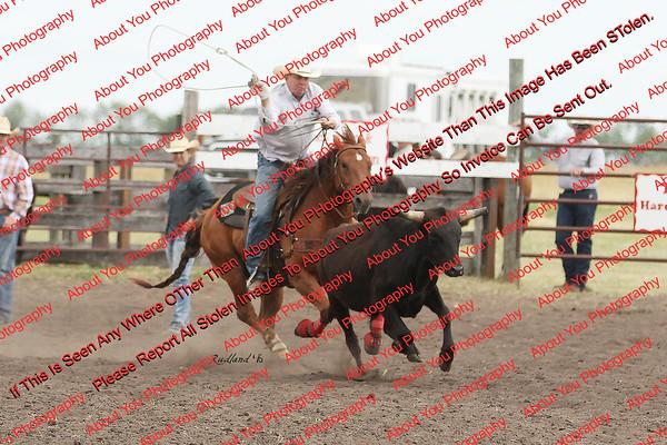 Towner 7 3 16 Slack SRBW - 00064