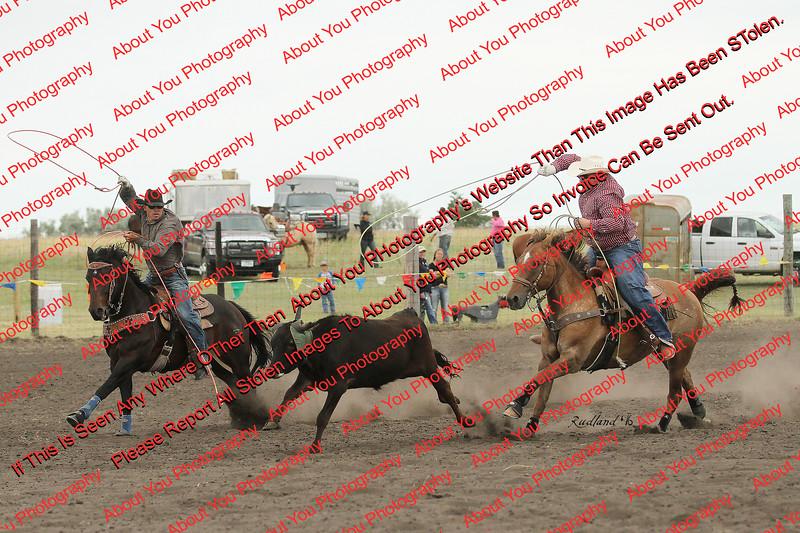 Towner 7 3 16 Team Roping =  00103