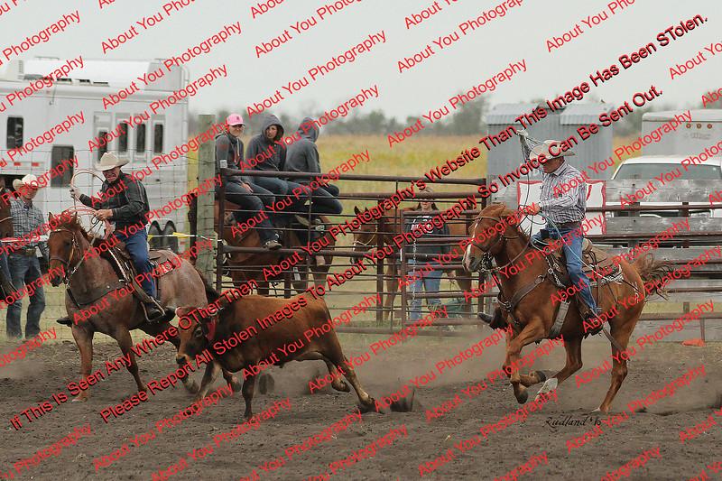 Towner 7 3 16 Team Roping =  00079