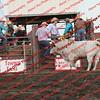 Towner 7 3 16 Bulls =  00018