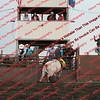 Towner 7 3 16 Bulls =  00008