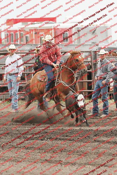 Towner 7 3 16 Calf Roping- 00001