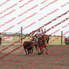 Towner 7 3 16 Slack SRBW =  00011