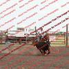Towner 7 3 16 Slack SRBW - 00009
