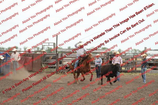 Towner 7 3 16 Slack SRBW - 00005