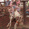 Towner 7 3 16 Saddle Bronc =  00016