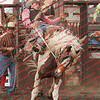 Towner 7 3 16 Saddle Bronc =  00018