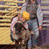 WE -- SPerf Sheep  - 00019