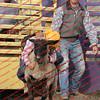 WE -- SPerf Sheep  - 00020