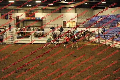 Abrahamson Bull Fighting & Riding School 2018