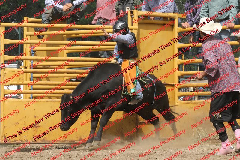 Mad18_SatPerf_Bulls-  0006