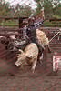 Towner--19-3-Perf-BULLS- 0017