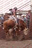 Towner--19-4-Perf-BULLS- 0003