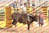 Mad17-P1-Bulls-014