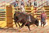Mad17-P1-Bulls-013