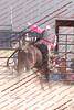 Mad17-P2-Bulls- 015