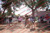 Plaza-17-S-1- 034