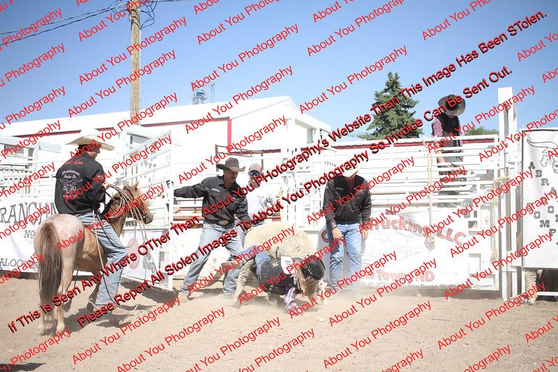 Plaza-17-S-2- 00009