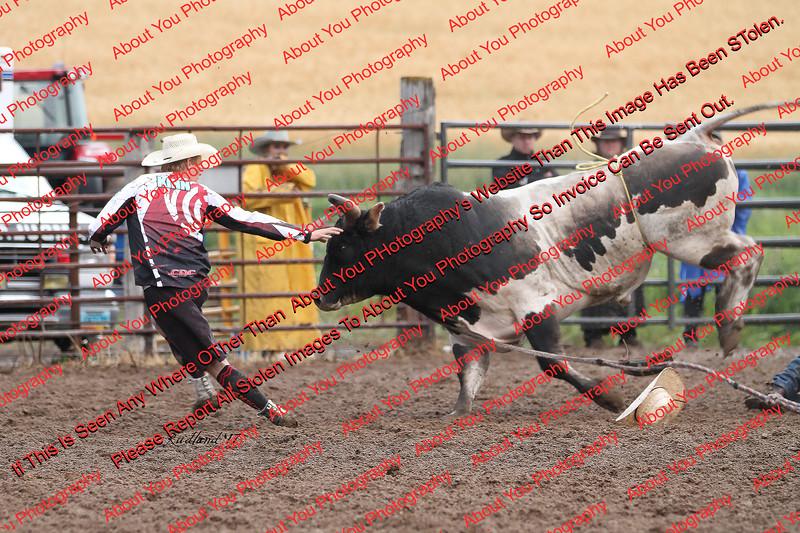 Max17 - P2 - Bulls - 001