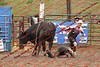 Max17 - P2 - Bulls - 074