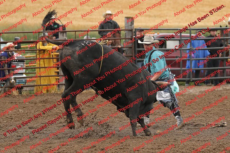 Max17 - P2 - Bulls - 062