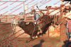 Towner 17 Perf 1 - Bulls -0006