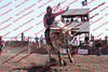 Towner 17 Perf 2 - Bulls - 0010