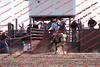 Towner 17 Perf 2 - Bulls - 0012