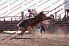 Towner 17 Perf 2 - Bulls - 0017