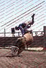 Towner 17 Perf 2 - Bulls - 0020