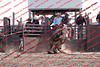 Towner 17 Perf 2 - Bulls - 0013