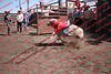 Towner 17 Perf 2 - Sheep - 00019