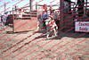 Towner 17 Perf 2 - Sheep - 00016