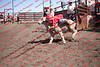 Towner 17 Perf 2 - Sheep - 00004