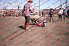 Towner 17 Perf 2 - Sheep - 00024