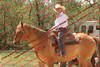 WEVQ Horse - 00007