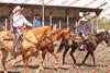 WEVQ Horse - 00009