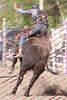 WE Sun Perf Bulls - 0147