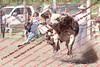 WE Sun Perf Bulls - 0138