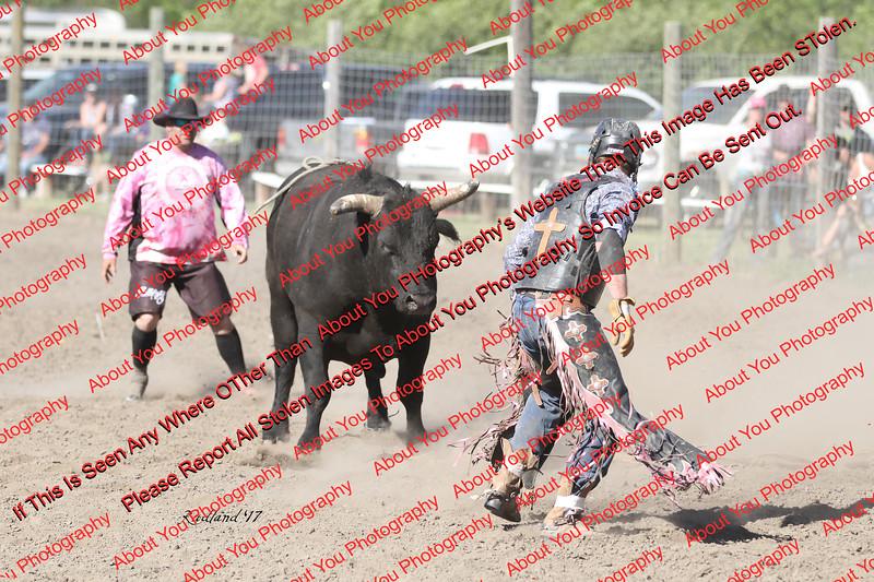 WE Sun Perf Bulls - 0152