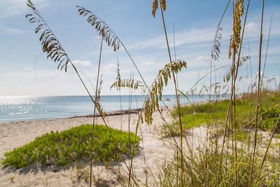 206 Ocean Way - Seagrove East-132