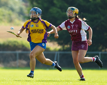 20th September 2020 - Tipperary Camogie Intermediate League Final - Newport / Ballinahinch vs Borris-Ileigh at The Ragg, Co Tipperary.