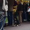 Elisa Valgaerts - straatfotografie 2